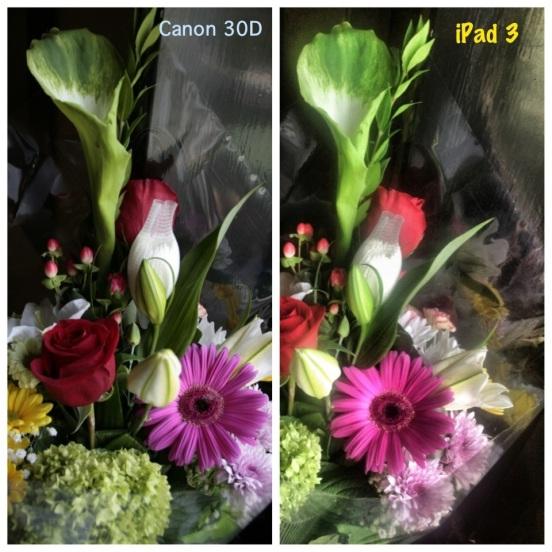 20120927-150006.jpg